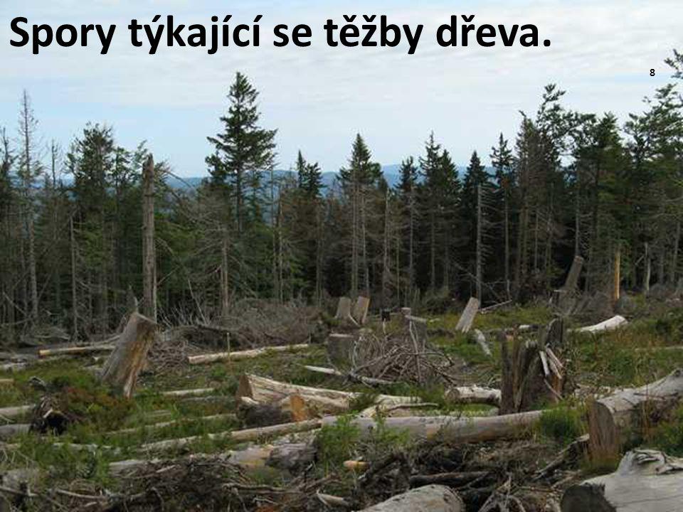 Spory týkající se těžby dřeva. 8