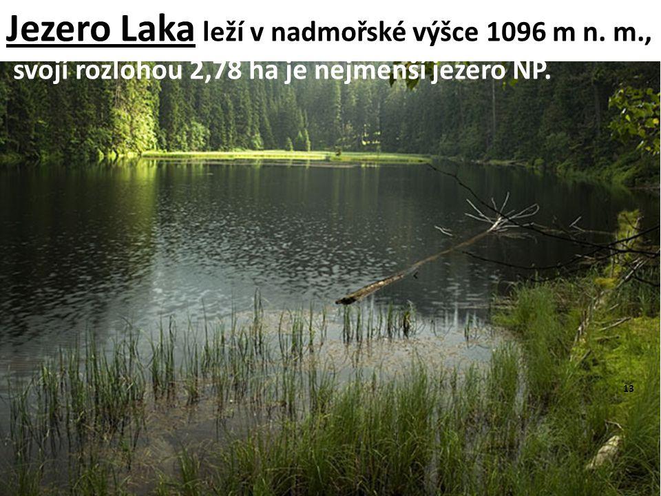 Jezero Laka leží v nadmořské výšce 1096 m n. m., svojí rozlohou 2,78 ha je nejmenší jezero NP. 13