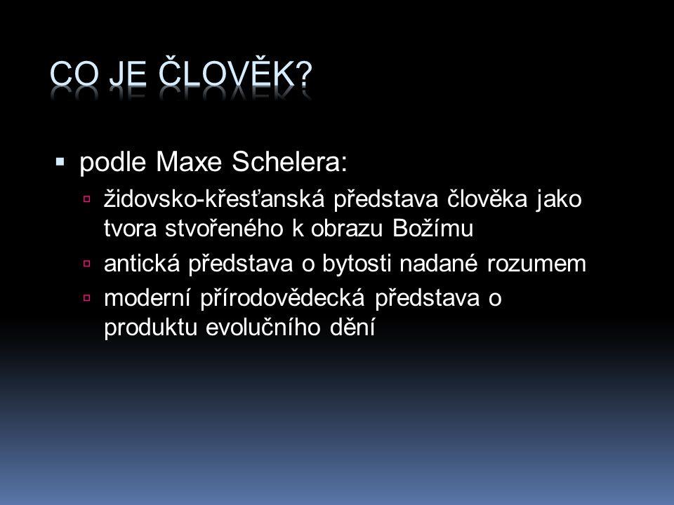  podle Maxe Schelera:  židovsko-křesťanská představa člověka jako tvora stvořeného k obrazu Božímu  antická představa o bytosti nadané rozumem  mo