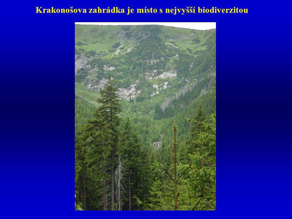 Krakonošova zahrádka je místo s nejvyšší biodiverzitou