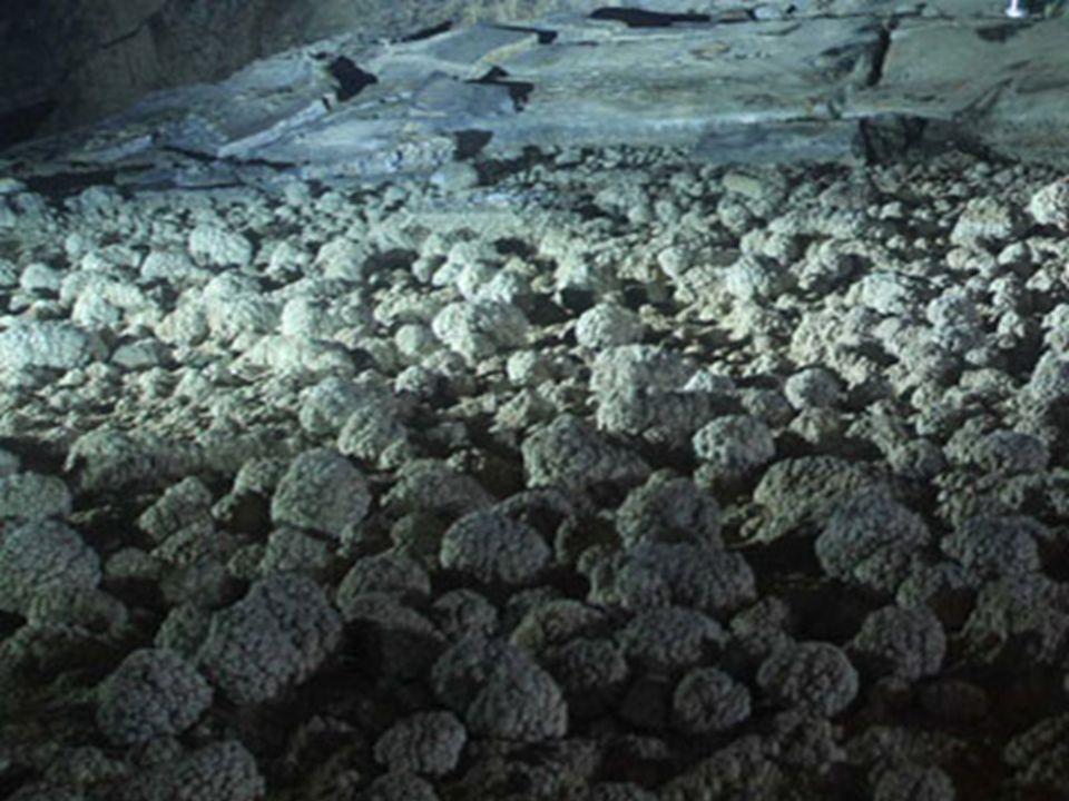 National Geographic poslal svůj tým, aby zjistili vše o této jeskyni. Krásné fotografie od Carsten Petera byly prezentovány prvně v lednu 2011.