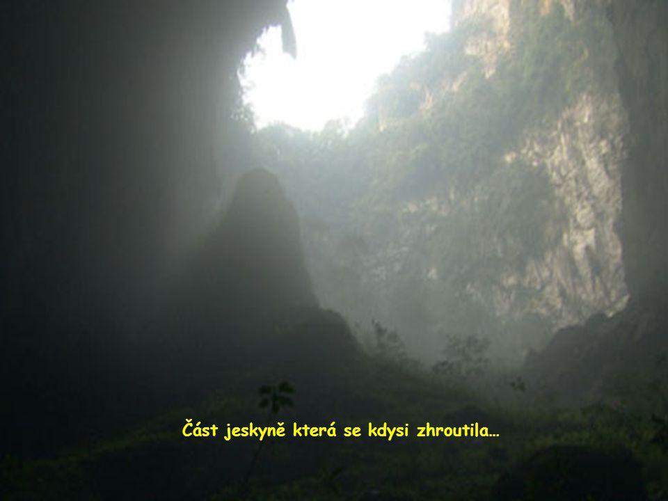 Čtvrt míle pod povrchem džungle Dolines se vytvořil systém, ve kterém se zhroutila část stropu jeskyně, což umožnilo vytváření nových ekosystémů...