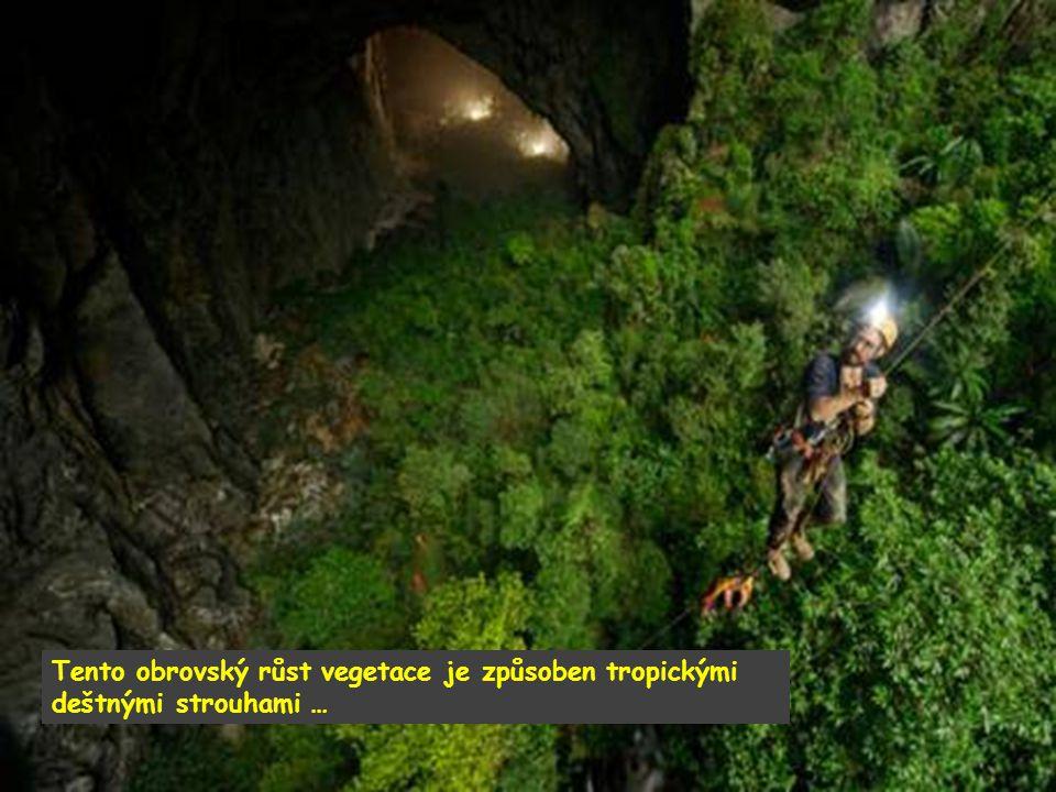 Nová jeskyně je 200 metrů vysoká a 150 metrů široká, a je téměř dvakrát větší než současný rekordman – jeskyně Deer Cave v Malajsii.
