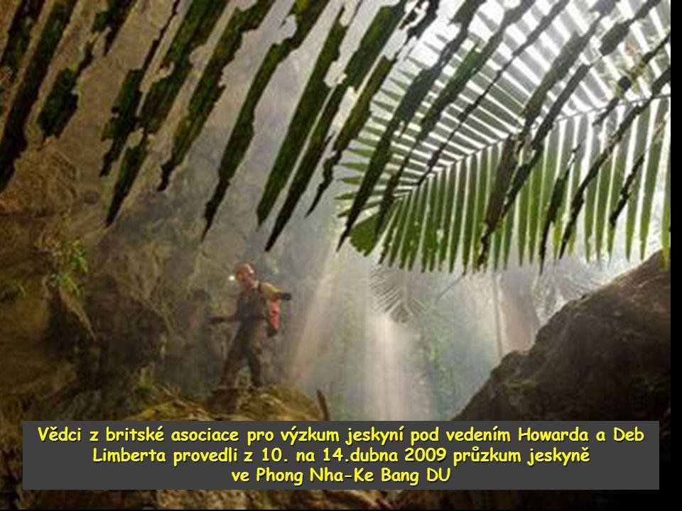 Vědci z britské asociace pro výzkum jeskyní pod vedením Howarda a Deb Limberta provedli z 10.