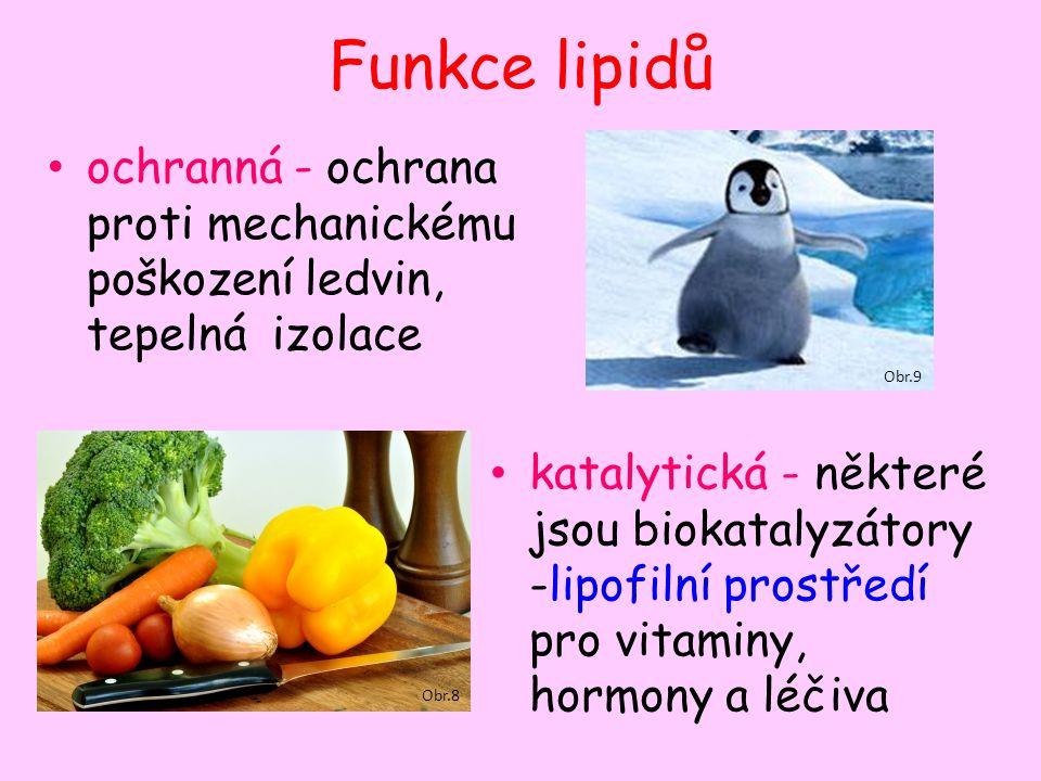 Funkce lipidů ochranná - ochrana proti mechanickému poškození ledvin, tepelná izolace katalytická - některé jsou biokatalyzátory -lipofilní prostředí pro vitaminy, hormony a léčiva Obr.8 Obr.9