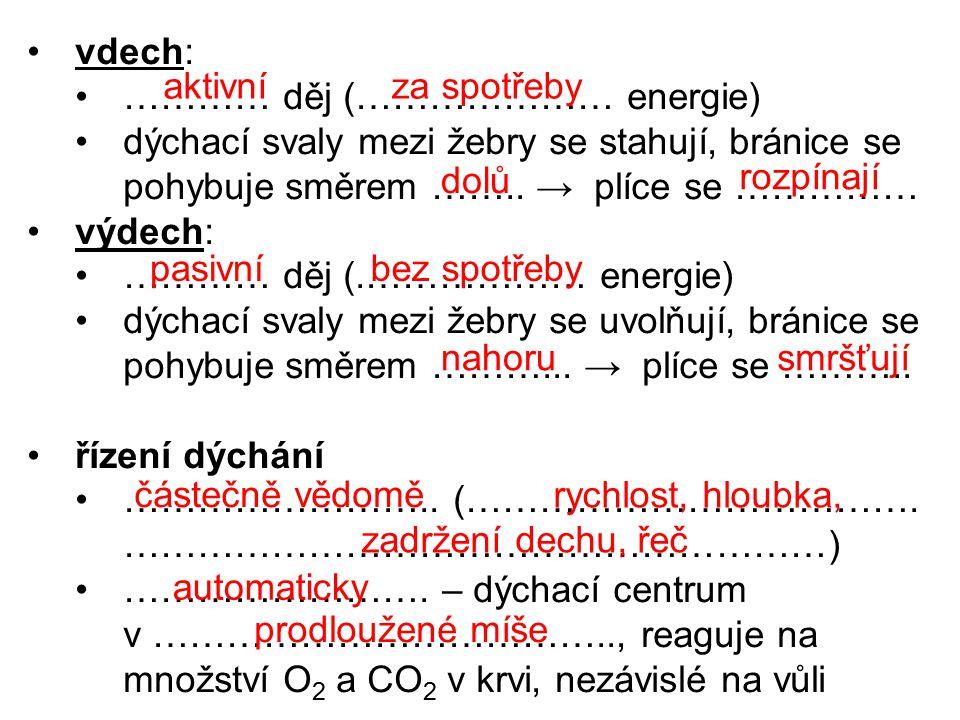 vdech: ………… děj (………………… energie) dýchací svaly mezi žebry se stahují, bránice se pohybuje směrem ……..