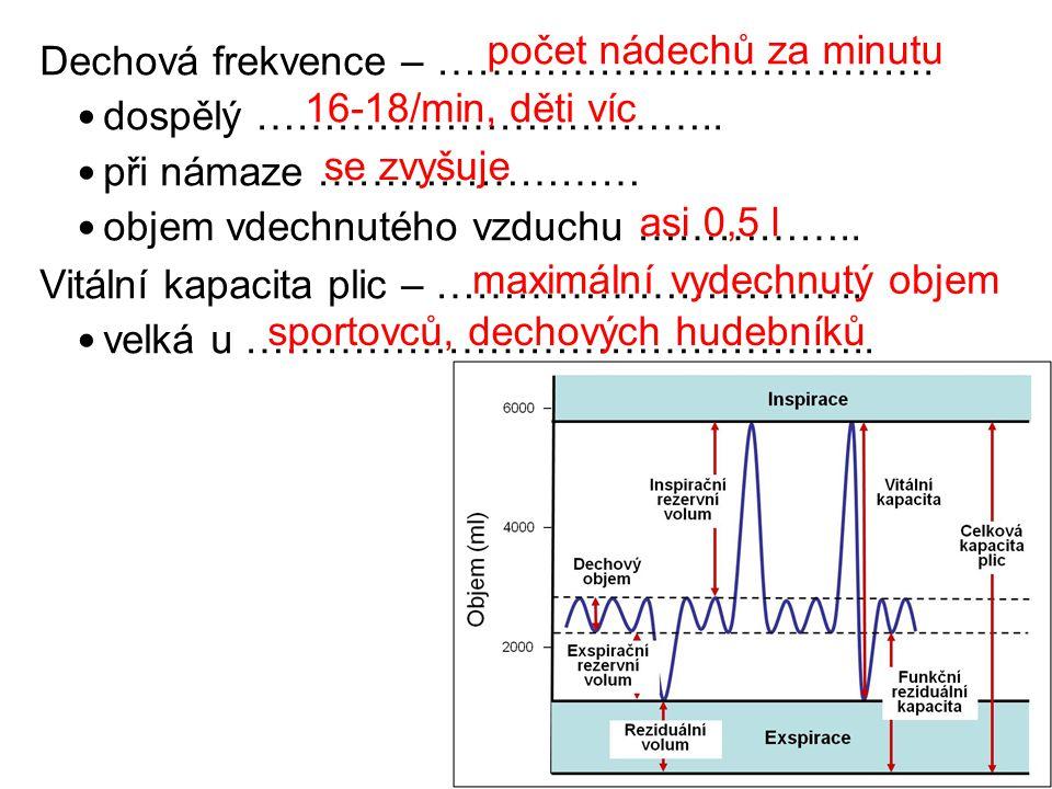 Dechová frekvence – ……………………………….dospělý ……………………………..