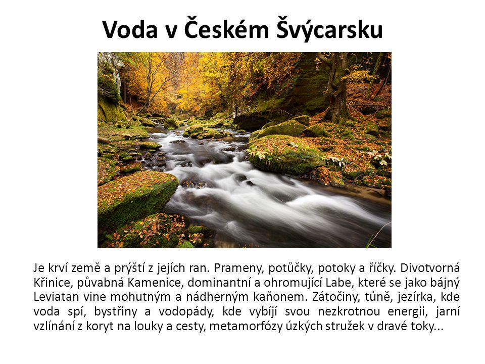 Voda v Českém Švýcarsku Je krví země a prýští z jejích ran. Prameny, potůčky, potoky a říčky. Divotvorná Křinice, půvabná Kamenice, dominantní a ohrom