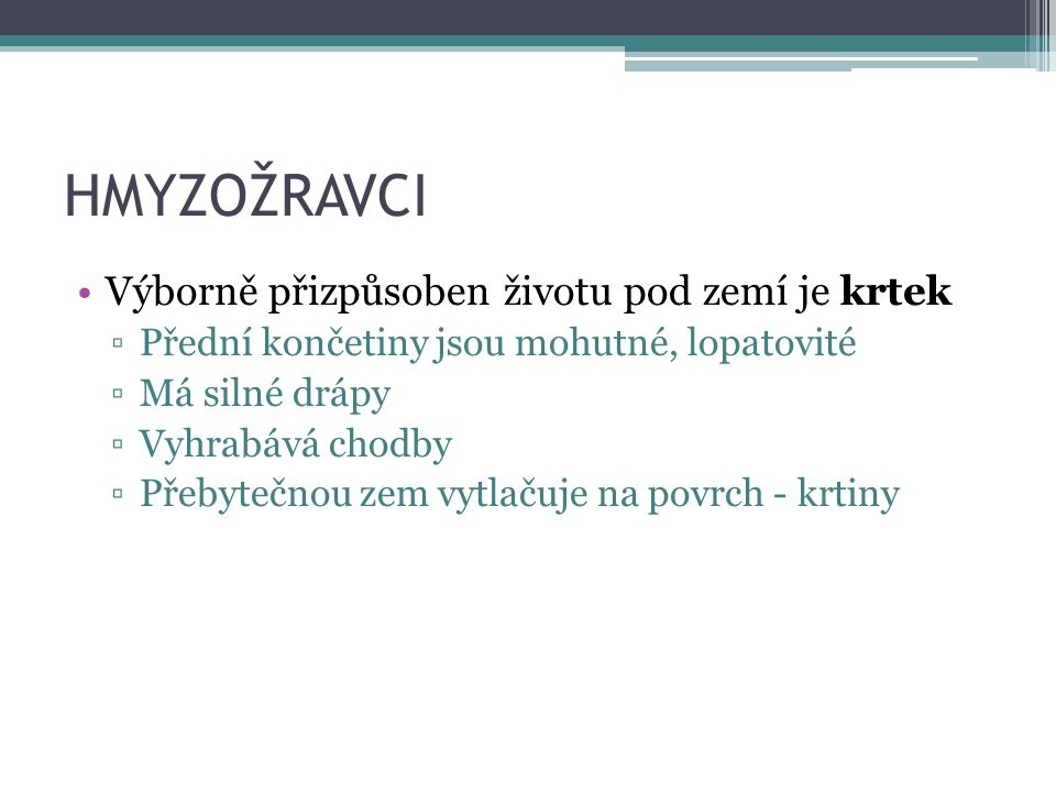 HMYZOŽRAVCI Rejsci Podobají se myším Mají dlouhý špičatý čumáček Nejhojnější v ČR je rejsek obecný a rejsek malý – nejmenší savec v ČR