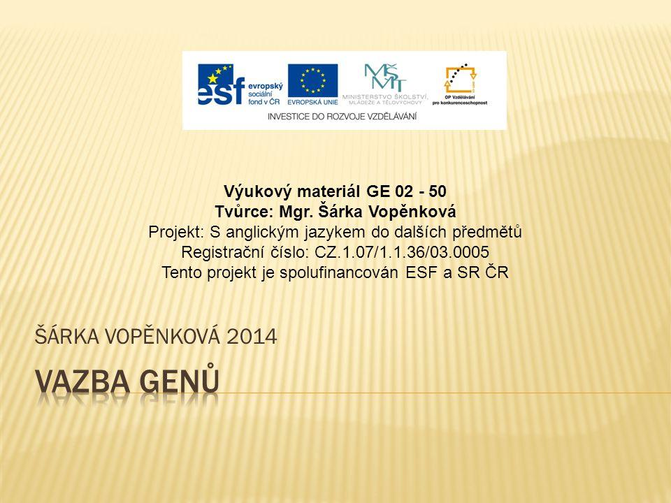 ŠÁRKA VOPĚNKOVÁ 2014 Výukový materiál GE 02 - 50 Tvůrce: Mgr. Šárka Vopěnková Projekt: S anglickým jazykem do dalších předmětů Registrační číslo: CZ.1