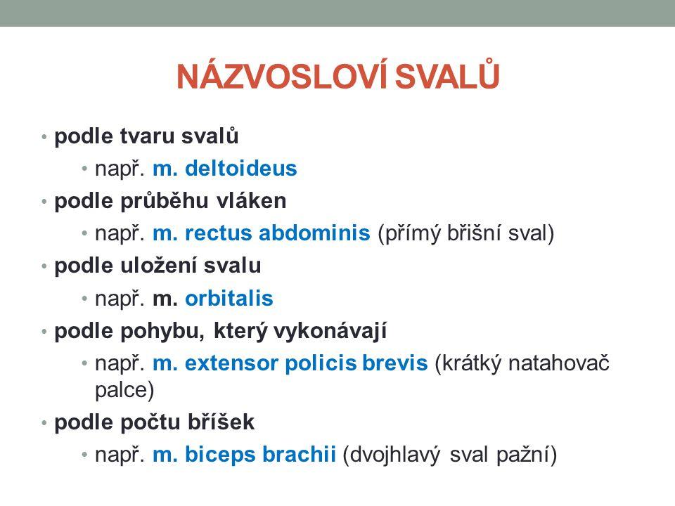 ZDROJE: Dylevský,I., Somatologie: Učebnice pro zdravotnické školy a bakalářské studium, druhé, Epava, Olomouc, 2000 ORIGINAL UPLOADER WAS FIFO AT SV.WIKIPEDIA.