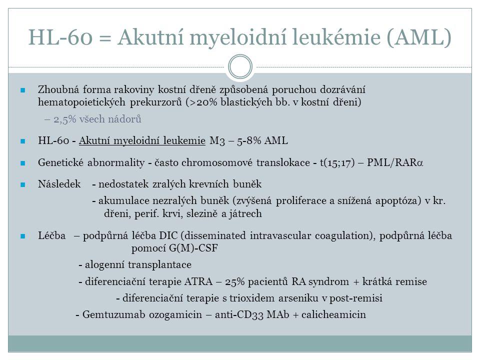 HL-60 = Akutní myeloidní leukémie (AML) Zhoubná forma rakoviny kostní dřeně způsobená poruchou dozrávání hematopoietických prekurzorů (>20% blastickýc