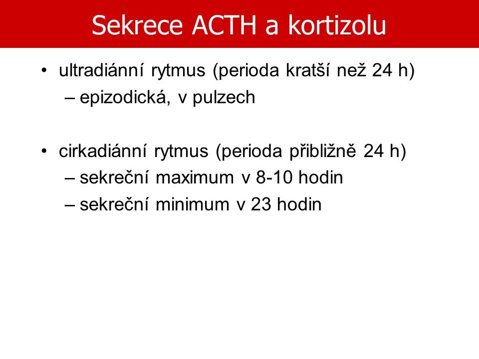 Sekrece ACTH a kortizolu ultradiánní rytmus (perioda kratší než 24 h) –epizodická, v pulzech cirkadiánní rytmus (perioda přibližně 24 h) –sekreční max