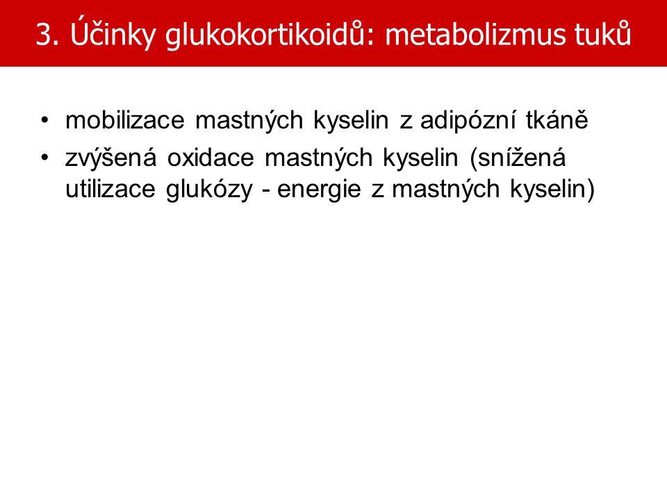 3. Účinky glukokortikoidů: metabolizmus tuků mobilizace mastných kyselin z adipózní tkáně zvýšená oxidace mastných kyselin (snížená utilizace glukózy