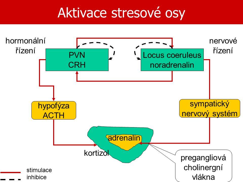 Aktivace stresové osy stimulace inhibice Locus coeruleus noradrenalin PVN CRH hormonální řízení nervové řízení sympatický nervový systém hypofýza ACTH