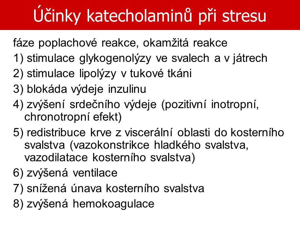 Účinky katecholaminů při stresu fáze poplachové reakce, okamžitá reakce 1) stimulace glykogenolýzy ve svalech a v játrech 2) stimulace lipolýzy v tuko