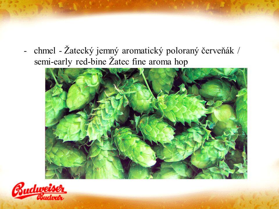 - chmel - Žatecký jemný aromatický poloraný červeňák / semi-early red-bine Žatec fine aroma hop