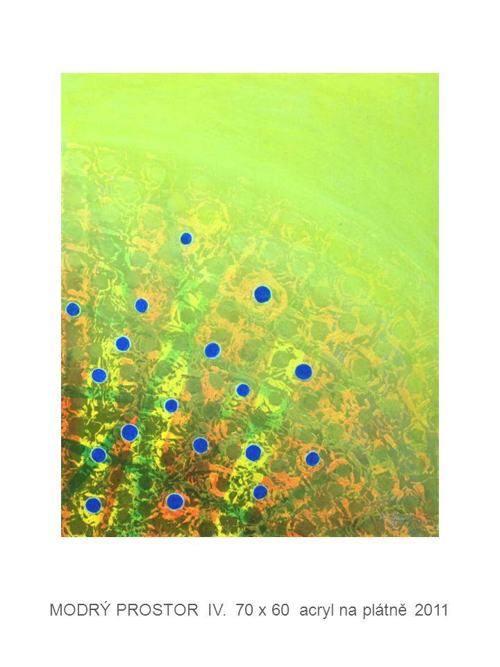 UV KRAJINA IX. 70 x 50 acryl na plátně 2011