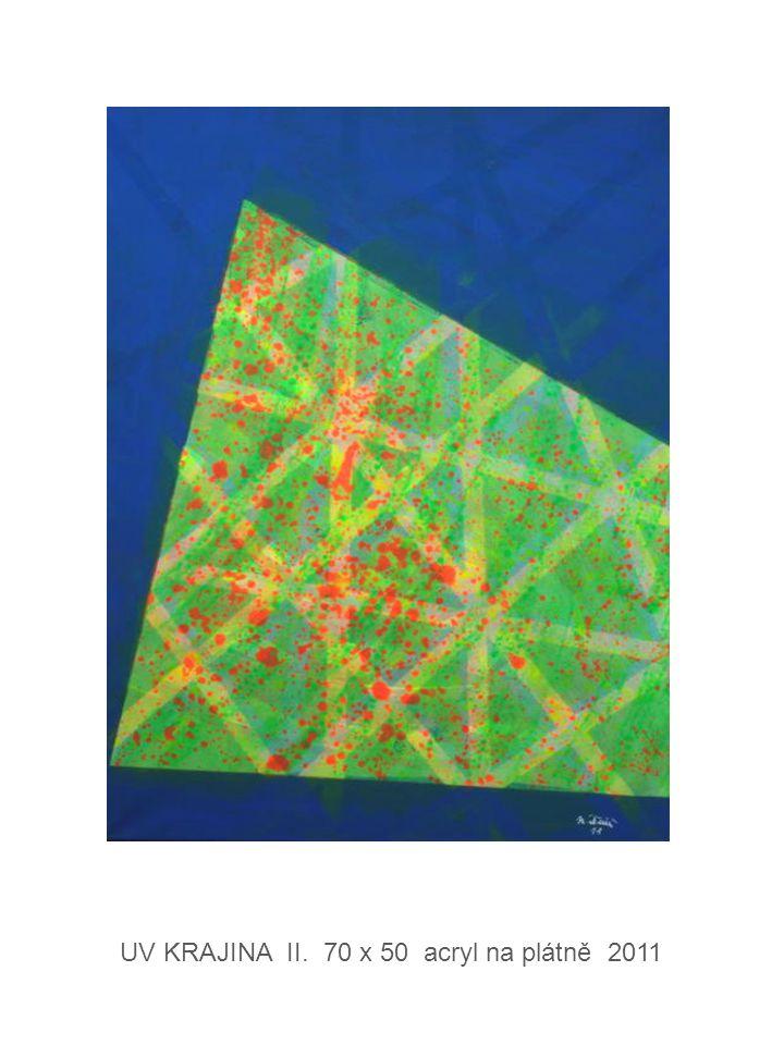 KONSTRUKCE IV. 70 x 60 acryl na plátně 2012
