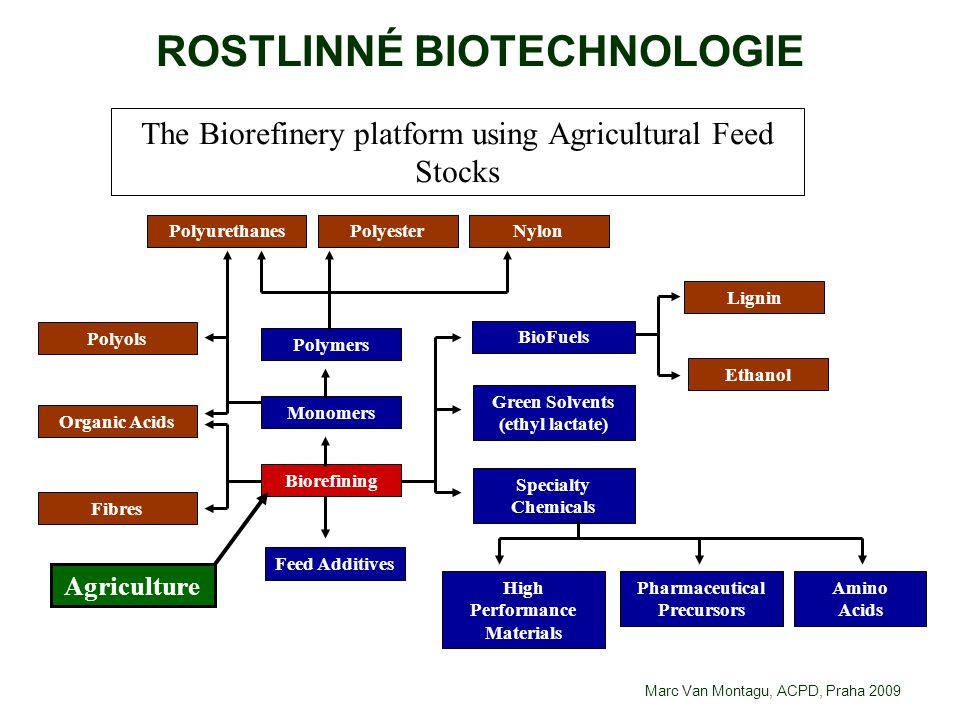 ROSTLINNÉ BIOTECHNOLOGIE Agriculture Fibres Organic Acids Polyols PolyurethanesPolyesterNylon Polymers Monomers Biorefining Feed Additives BioFuels Gr