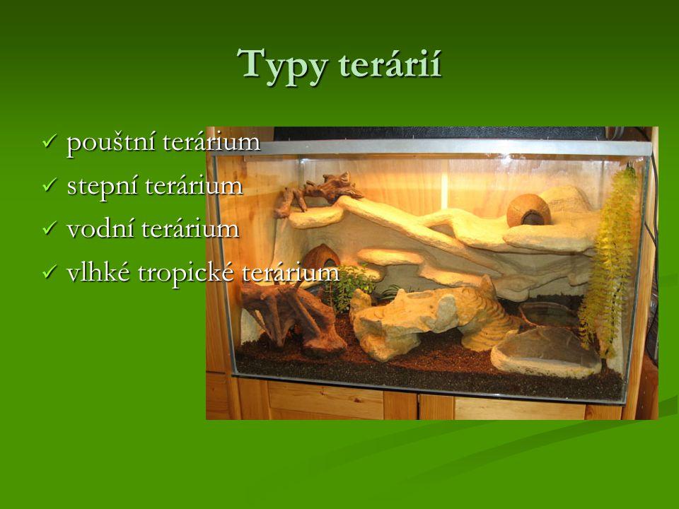 Pouštní terárium Pouštní teráriumobsahuje: - vysokou vrstvu písku nebo písčité zeminy - kameny a dřevěné kmínky (skrýše a místa na šplhání) - dostatek světla pro zdraví, aktivitu a schopnost rozmnožování řady plazů - nejméně jedno svítidlo pro každé zvíře - důkladné větrání (bývá obtížné udržet zde stálou teplotu) - mělká nádoba s čistou vodou teplota: - přes den je minimálně 30 °C, vystupuje však až na 40-45 °C - přes den je minimálně 30 °C, vystupuje však až na 40-45 °C - přes noc 15-25 °C - postřikování každé ráno a večer (náhrada rosy) - zvířata někdy tuto vodu pijí a pomáhá jim při shazování kůže.