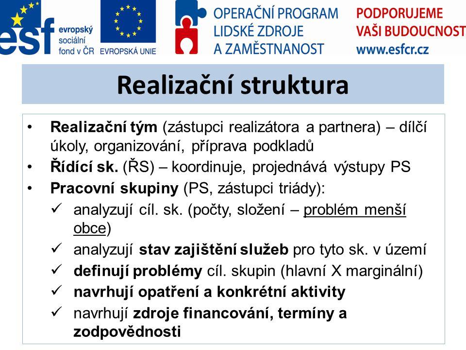Realizační struktura Realizační tým (zástupci realizátora a partnera) – dílčí úkoly, organizování, příprava podkladů Řídící sk. (ŘS) – koordinuje, pro