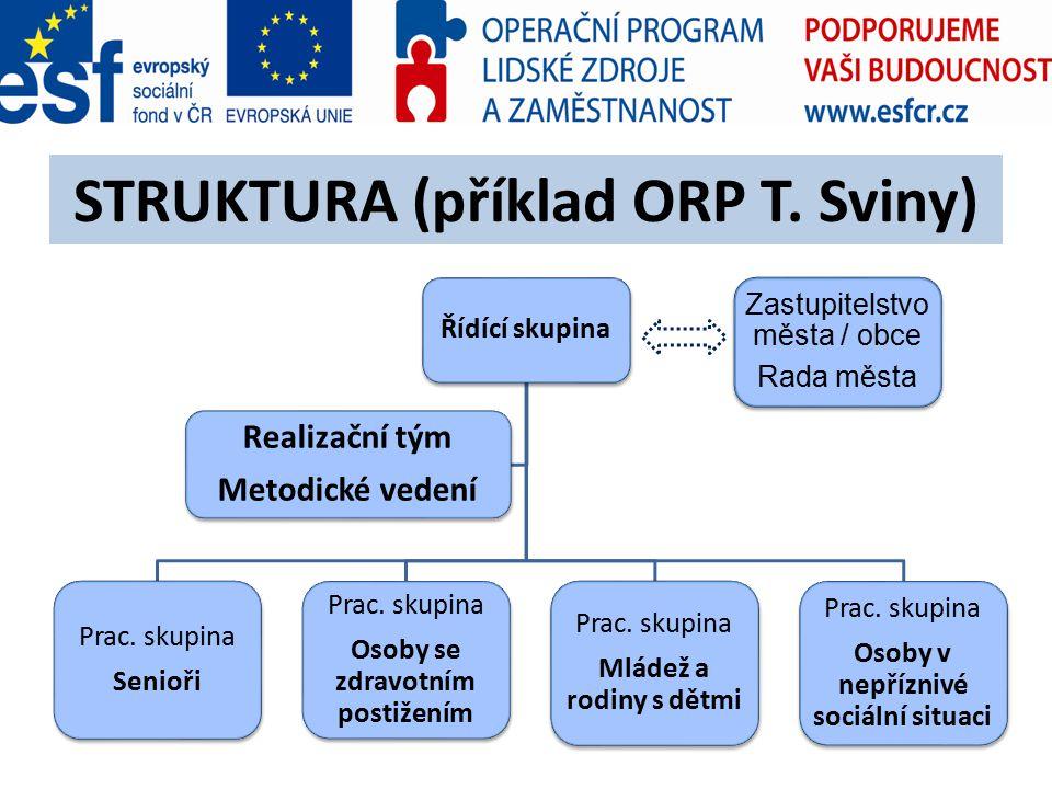 STRUKTURA (příklad ORP T. Sviny) Zastupitelstvo města / obce Rada města Řídící skupina Prac.