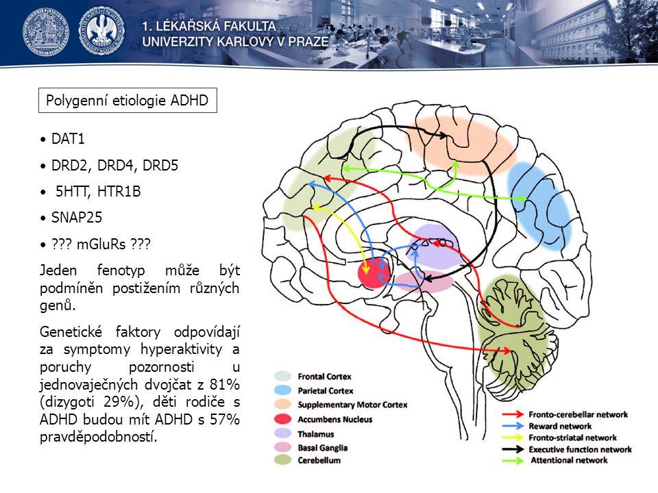 Polygenní etiologie ADHD DAT1 DRD2, DRD4, DRD5 5HTT, HTR1B SNAP25 ??? mGluRs ??? Jeden fenotyp může být podmíněn postižením různých genů. Genetické fa