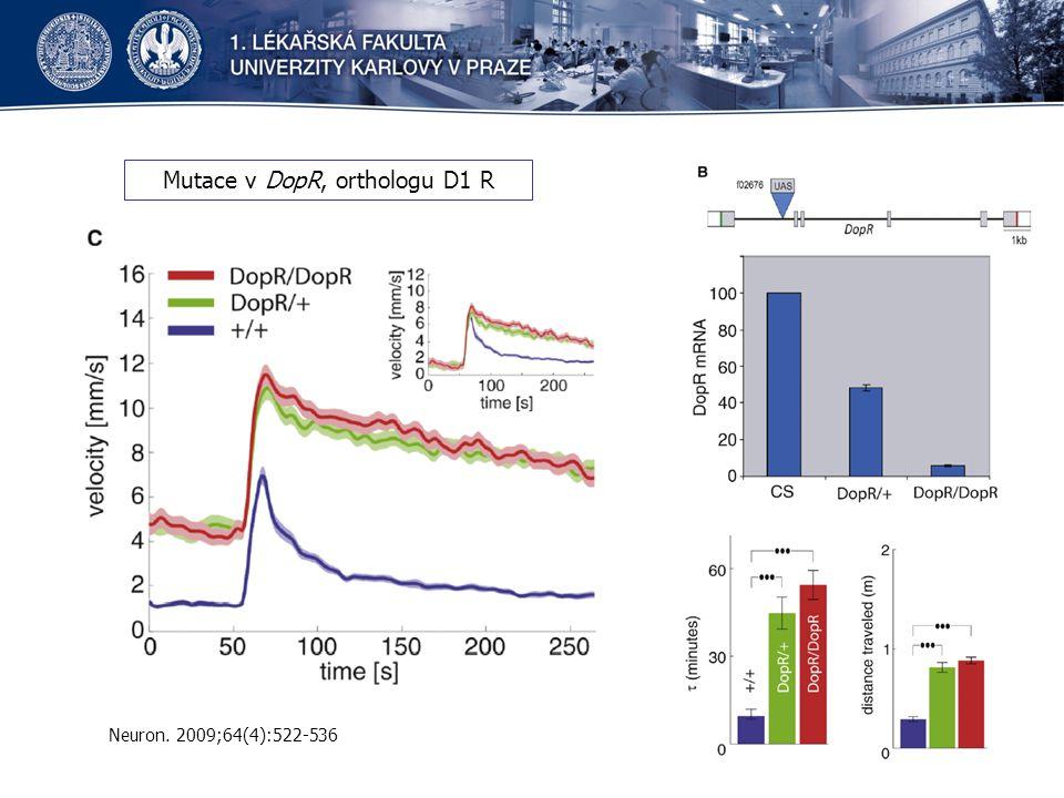Mutace v DopR, orthologu D1 R Neuron. 2009;64(4):522-536
