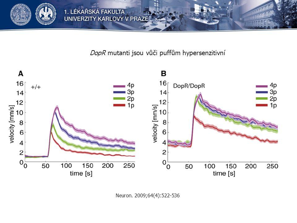 DopR mutanti jsou vůči puffům hypersenzitivní Neuron. 2009;64(4):522-536