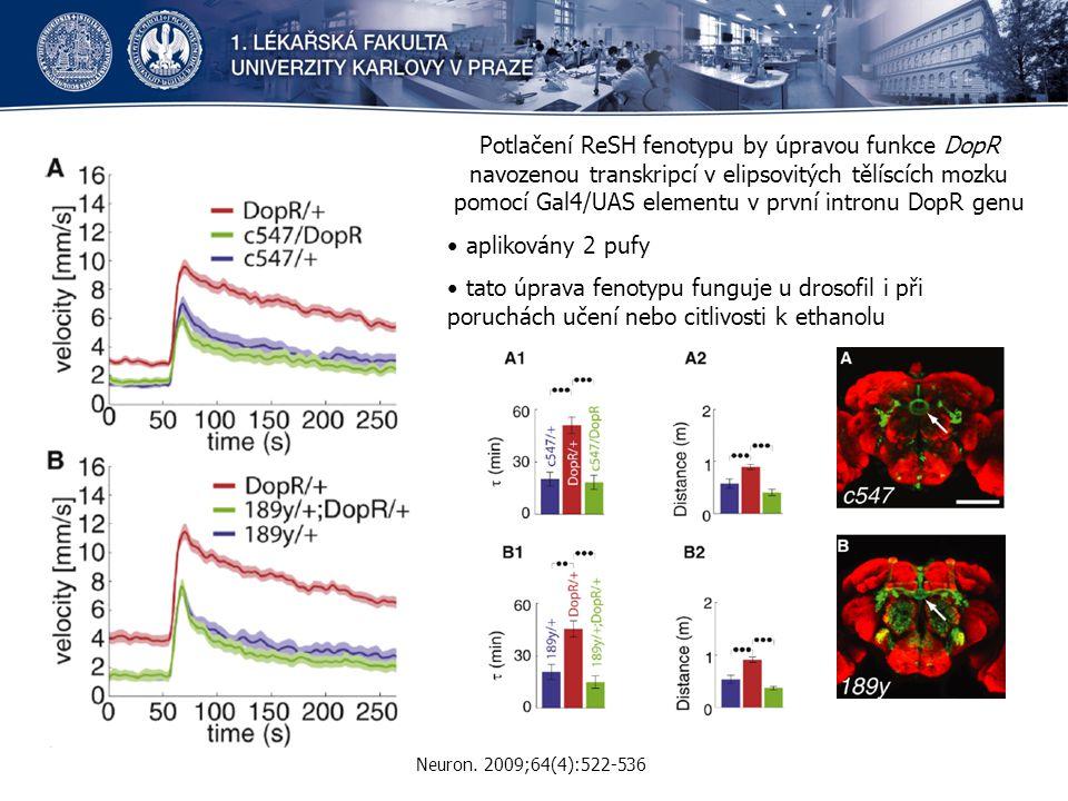 Potlačení ReSH fenotypu by úpravou funkce DopR navozenou transkripcí v elipsovitých tělíscích mozku pomocí Gal4/UAS elementu v první intronu DopR genu aplikovány 2 pufy tato úprava fenotypu funguje u drosofil i při poruchách učení nebo citlivosti k ethanolu Neuron.