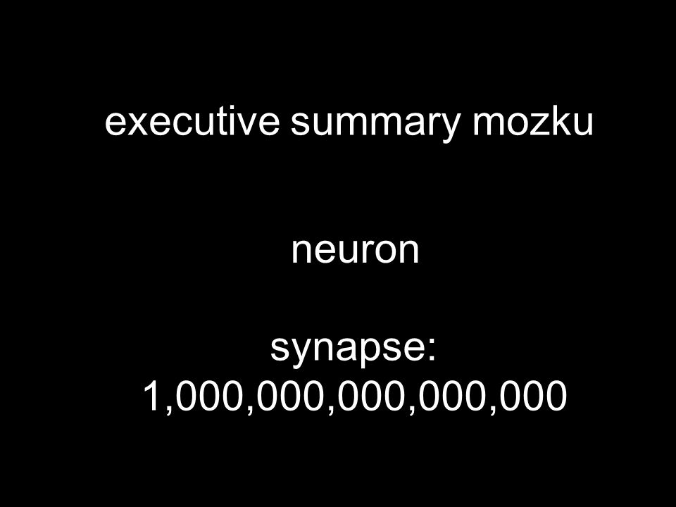 executive summary mozku neuron synapse: 1,000,000,000,000,000