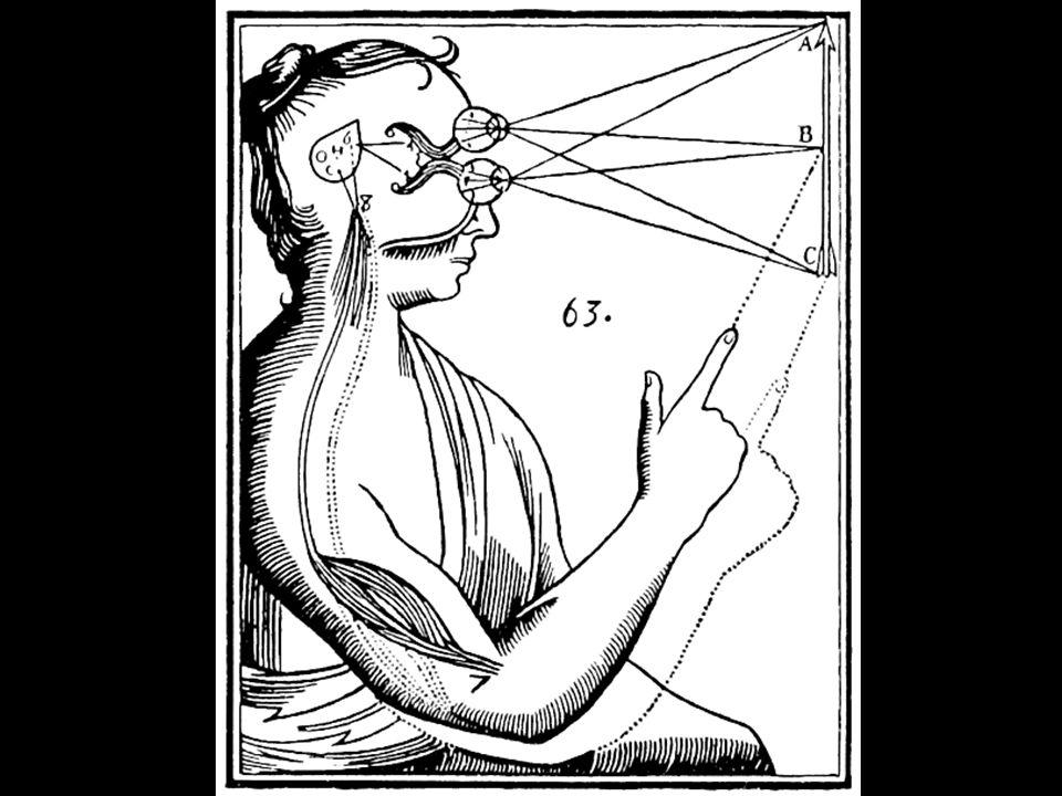 Nemožnost hluboké koncentrace Klingberg: čím více, tím více Multitasking Gardner: fragmentace života