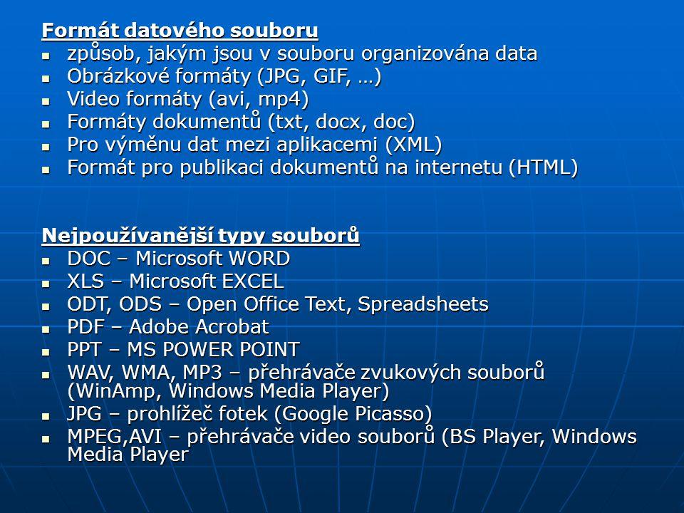 Formát datového souboru způsob, jakým jsou v souboru organizována data způsob, jakým jsou v souboru organizována data Obrázkové formáty (JPG, GIF, …)