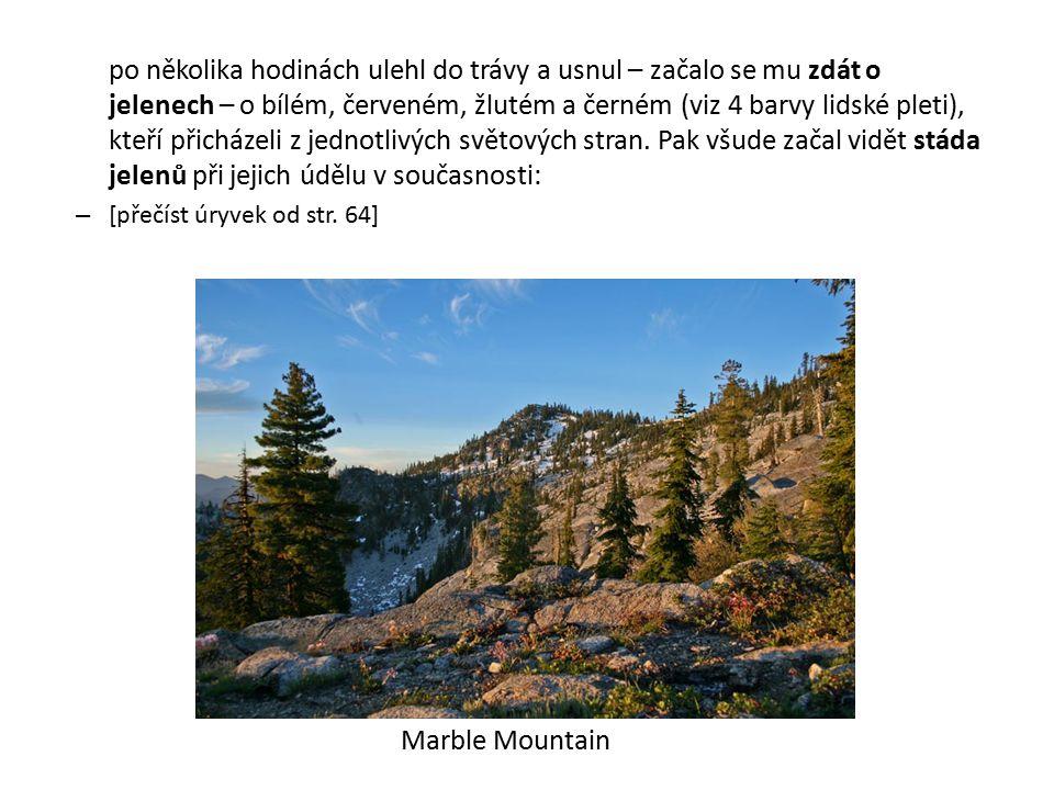 Poznámky: – Esus a Cernunnos nejsou snadno pochopitelná božstva, jejich podstata je poměrně komplikovaná – o významu jmelí v druidském kultu a sluneční symbolice jeleních parohů se dozvídáme již z jeskynních maleb doby kamenné (kontakt Keltů po příchodu do Evropy se zbytky megalitické kultury): v jeskyni Les Trois frères byla objevena antropomorfní podobizna boha či šamana s jelení hlavou… – také Esusovi byly přinášeny lidské oběti – byly buď rozčtvrceny, nebo oběšeny, což připomíná věšení obětí pro germánského Ódina (viz též antický Théseus – syn boha moře Poseidóna – své oběti přivazoval k vrcholkům 2 ohnutých borovic, které uvolnil, takže se stromy vymrštily a přivázané tělo roztrhly) – každý z bohů spjatých s lidskými oběťmi měl specifický způsob rituálního skonu obětí (podobně i v mezoamerických kulturách)