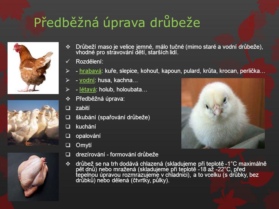 Předběžná úprava drůbeže  Drůbeží maso je velice jemné, málo tučné (mimo staré a vodní drůbeže), vhodné pro stravování dětí, starších lidí. Rozdělení