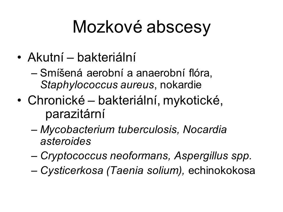 Mozkové abscesy Akutní – bakteriální –Smíšená aerobní a anaerobní flóra, Staphylococcus aureus, nokardie Chronické – bakteriální, mykotické, parazitár