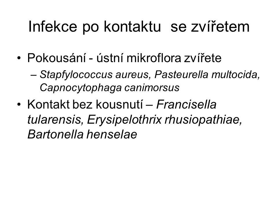 Infekce po kontaktu se zvířetem Pokousání - ústní mikroflora zvířete –Stapfylococcus aureus, Pasteurella multocida, Capnocytophaga canimorsus Kontakt