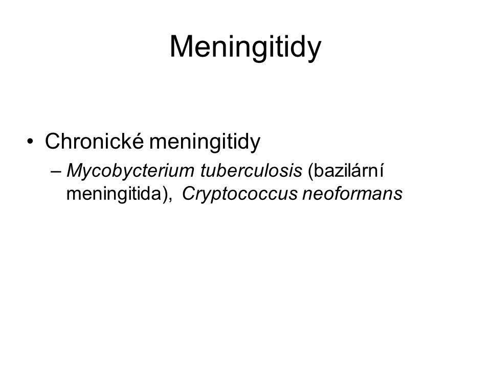 Meningitidy Chronické meningitidy –Mycobycterium tuberculosis (bazilární meningitida), Cryptococcus neoformans