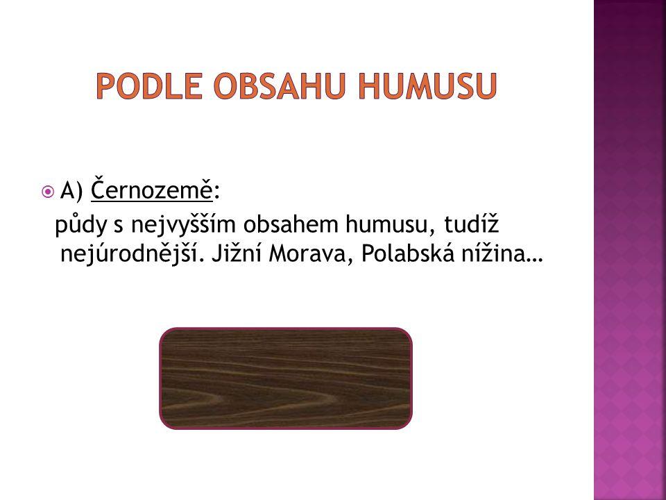  A) Černozemě: půdy s nejvyšším obsahem humusu, tudíž nejúrodnější. Jižní Morava, Polabská nížina…