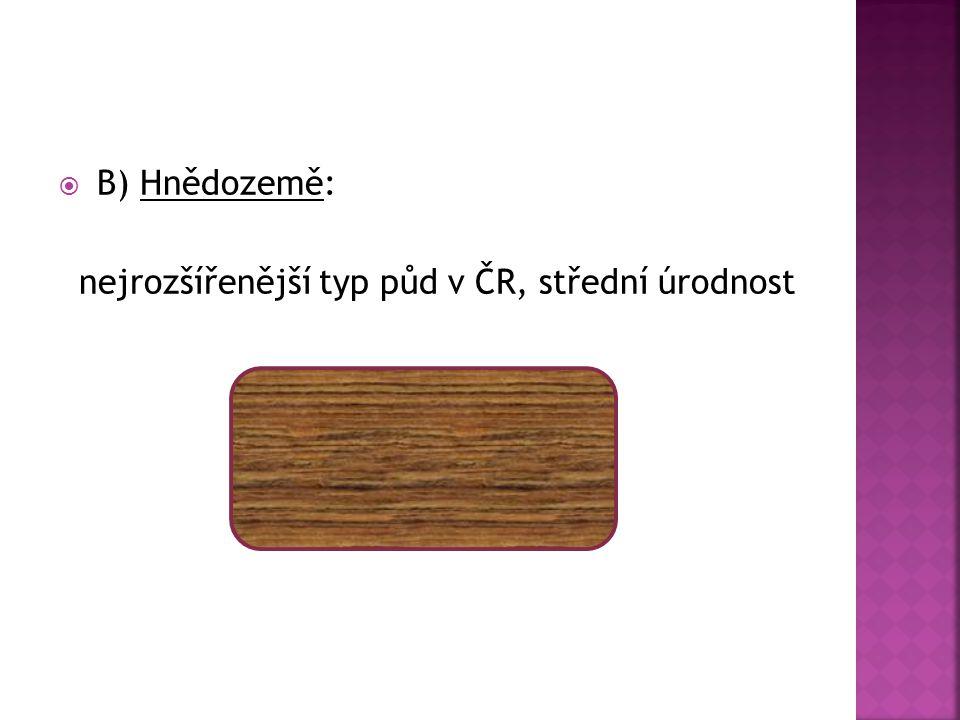  B) Hnědozemě: nejrozšířenější typ půd v ČR, střední úrodnost