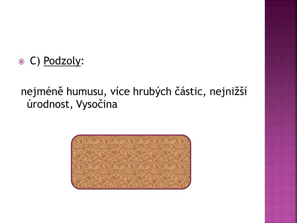  C) Podzoly: nejméně humusu, více hrubých částic, nejnižší úrodnost, Vysočina