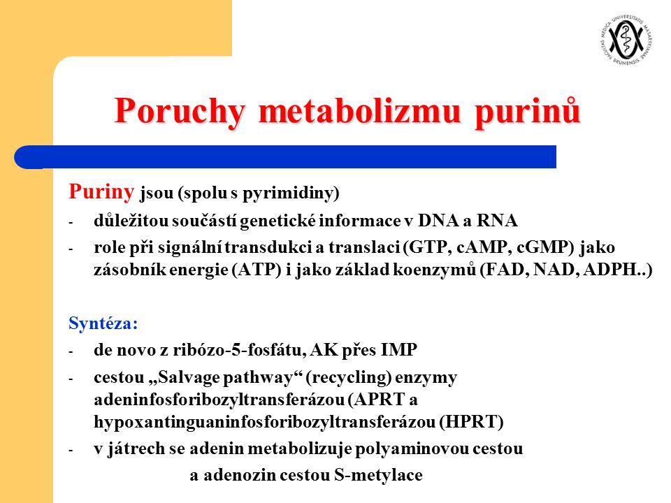 Poruchy metabolizmu purinů Puriny jsou (spolu s pyrimidiny) - důležitou součástí genetické informace v DNA a RNA - role při signální transdukci a tran