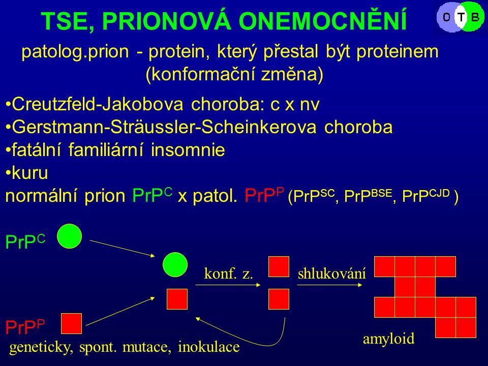 TSE, PRIONOVÁ ONEMOCNĚNÍ patolog.prion - protein, který přestal být proteinem (konformační změna) Creutzfeld-Jakobova choroba: c x nv Gerstmann-Sträussler-Scheinkerova choroba fatální familiární insomnie kuru normální prion PrP C x patol.