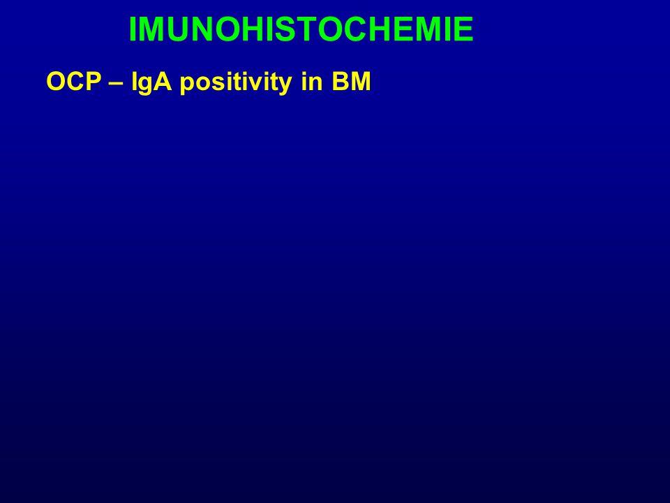 IMUNOHISTOCHEMIE OCP – IgA positivity in BM