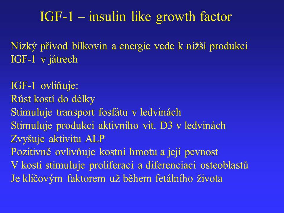 IGF-1 – insulin like growth factor Nízký přívod bílkovin a energie vede k nižší produkci IGF-1 v játrech IGF-1 ovliňuje: Růst kostí do délky Stimuluje
