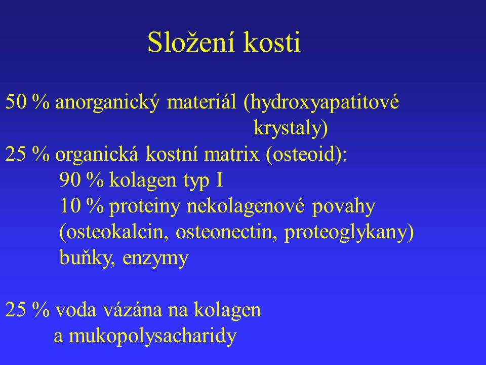 Složení kosti 50 % anorganický materiál (hydroxyapatitové krystaly) 25 % organická kostní matrix (osteoid): 90 % kolagen typ I 10 % proteiny nekolagen