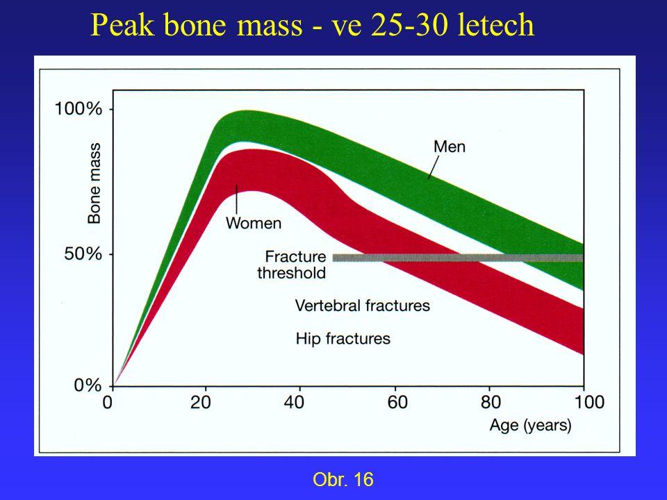 Peak bone mass - ve 25-30 letech Obr. 16