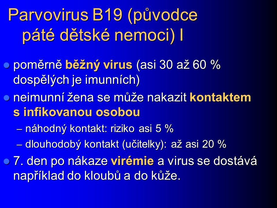 Parvovirus B19 (původce páté dětské nemoci) I poměrně běžný virus (asi 30 až 60 % dospělých je imunních) poměrně běžný virus (asi 30 až 60 % dospělých