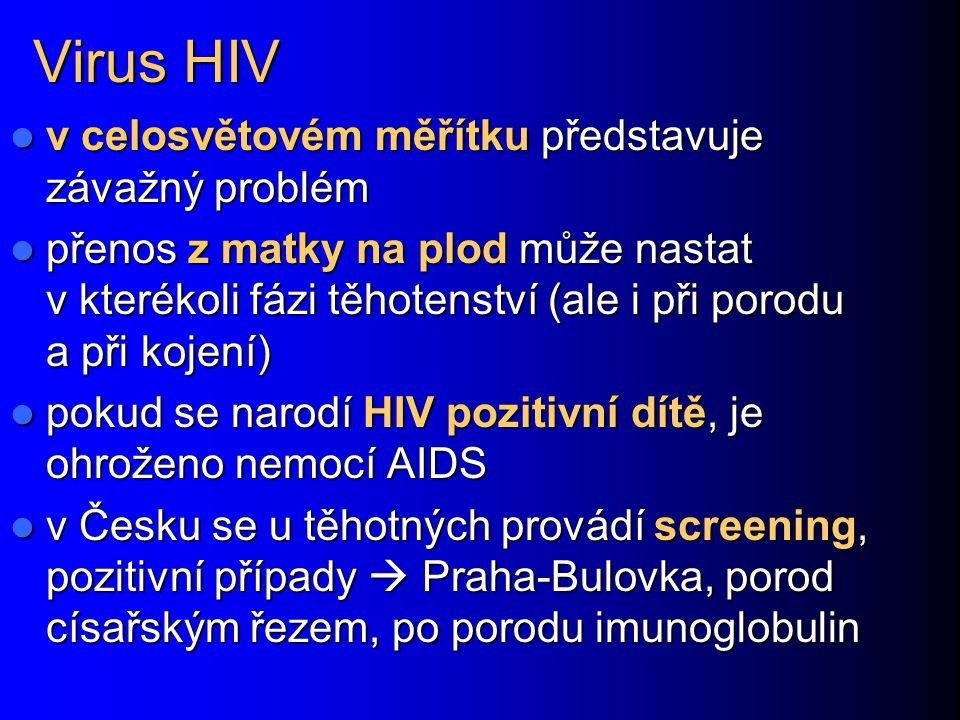 Virus HIV v celosvětovém měřítku představuje závažný problém v celosvětovém měřítku představuje závažný problém přenos z matky na plod může nastat v k